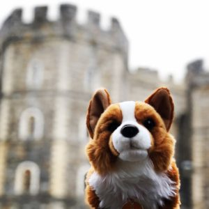Windsor Castle with Corgie - Travel Better Together with iNSIDE EUROPE